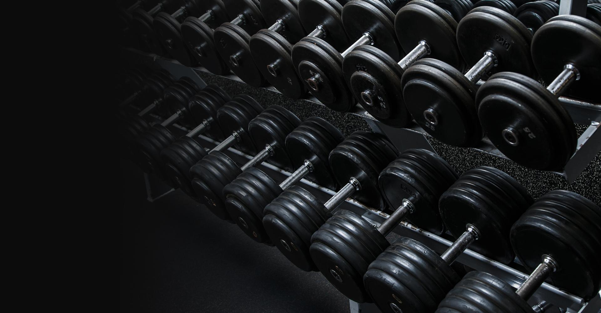 atlas-gym-2-kenosha-wisconsin-equipment